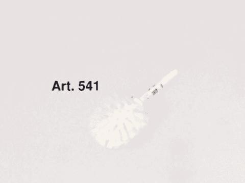 Scopificio Europeo art 541