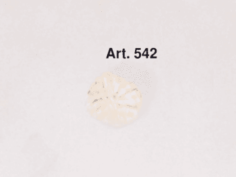 Scopificio Europeo art 542