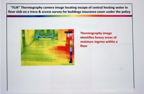 Thermograghy picture