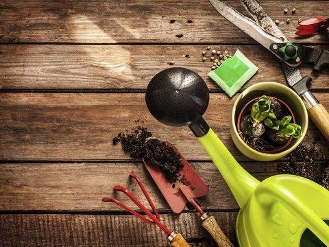 vendita attrezzi da giardinaggio