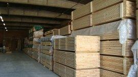 metrie prime, legname di qualità, legni pregiati