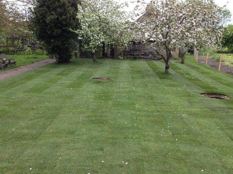 a huge garden