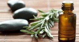 news, olio vegetale per la cura della pelle, estratti naturali