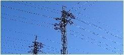 impianti elettrici civili