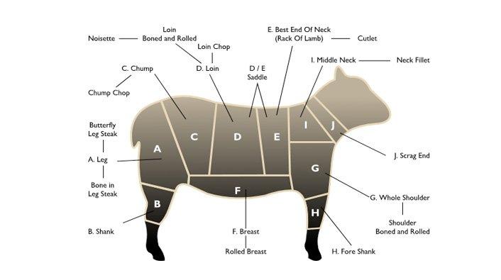 Lamb Cuts Chart