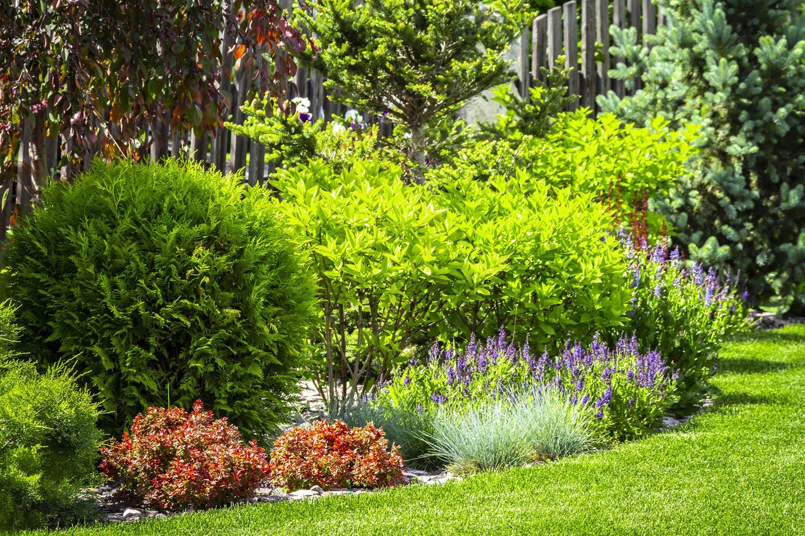Landscape Contractors Albany Saratoga Springs
