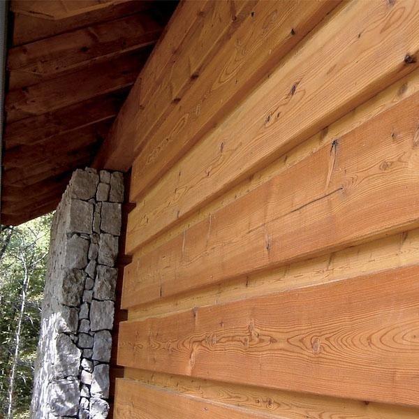 legno ed ecologia