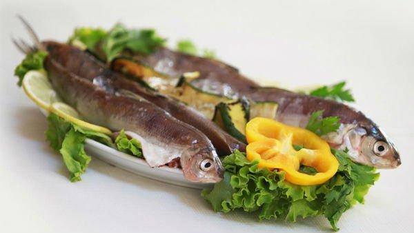 del pesce fresco su un letto di insalata