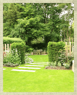 Large lawned garden with mature trees and shrubs