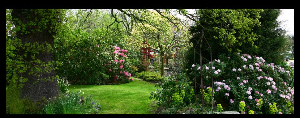 Large informal garden