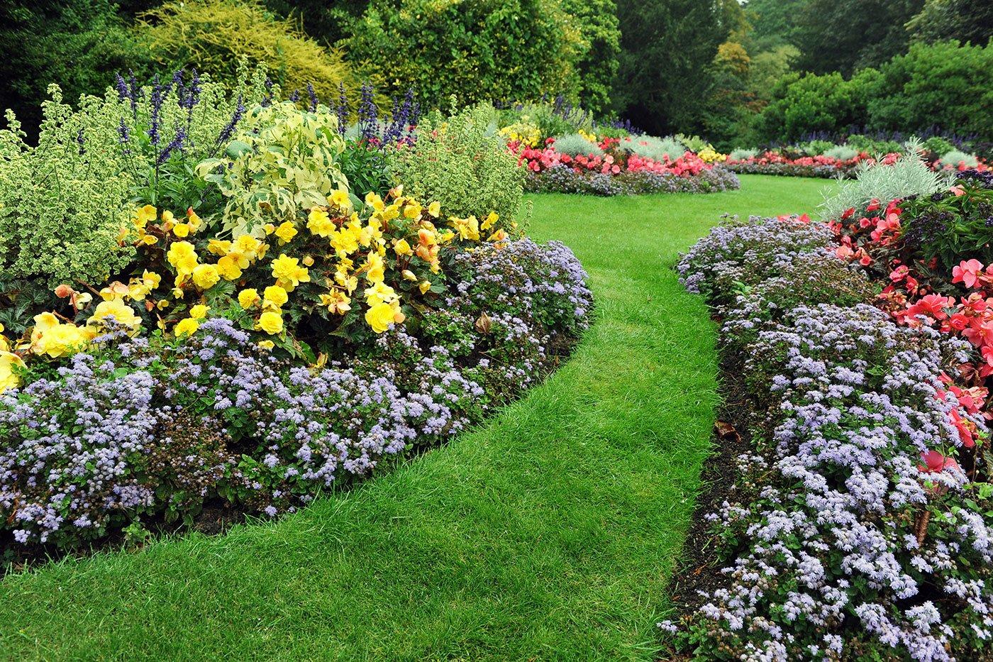 Giardino pieno di diversi fiori di tutti i colori e un cammino di erba