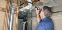 Termite treatment and prevention in Auckland