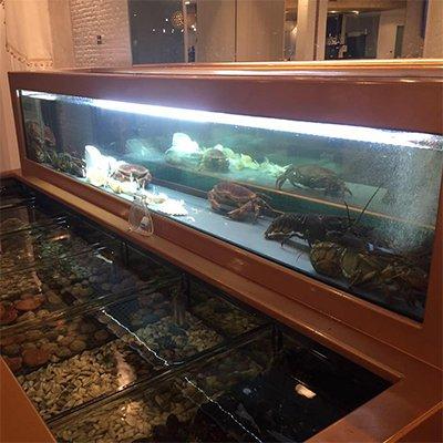 dei crostacei vivi in un acquario all'interno del ristorante