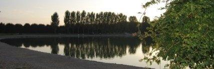 lago, pesca, carpa
