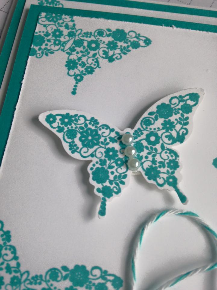 blue butterfly on a wide card
