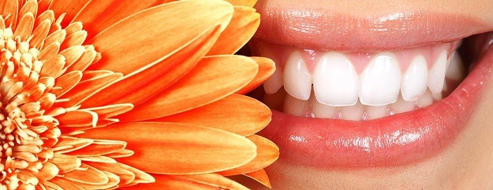 Studio Dentistico Monni Del Dott. Corrado Monni