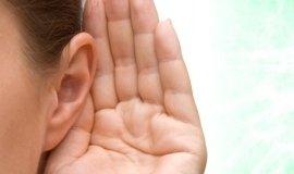 funzionalità auditiva