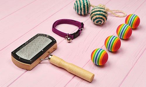 Pettine, collare bordeaux, palline piccole di vari colori su uno sfondo