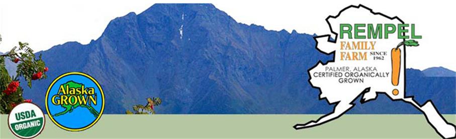 landscape vista of mountains in Palmer, AK
