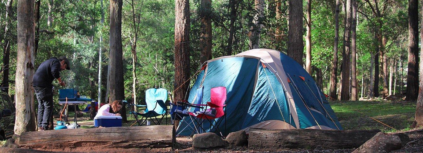 Camping At Tamborine Mountain