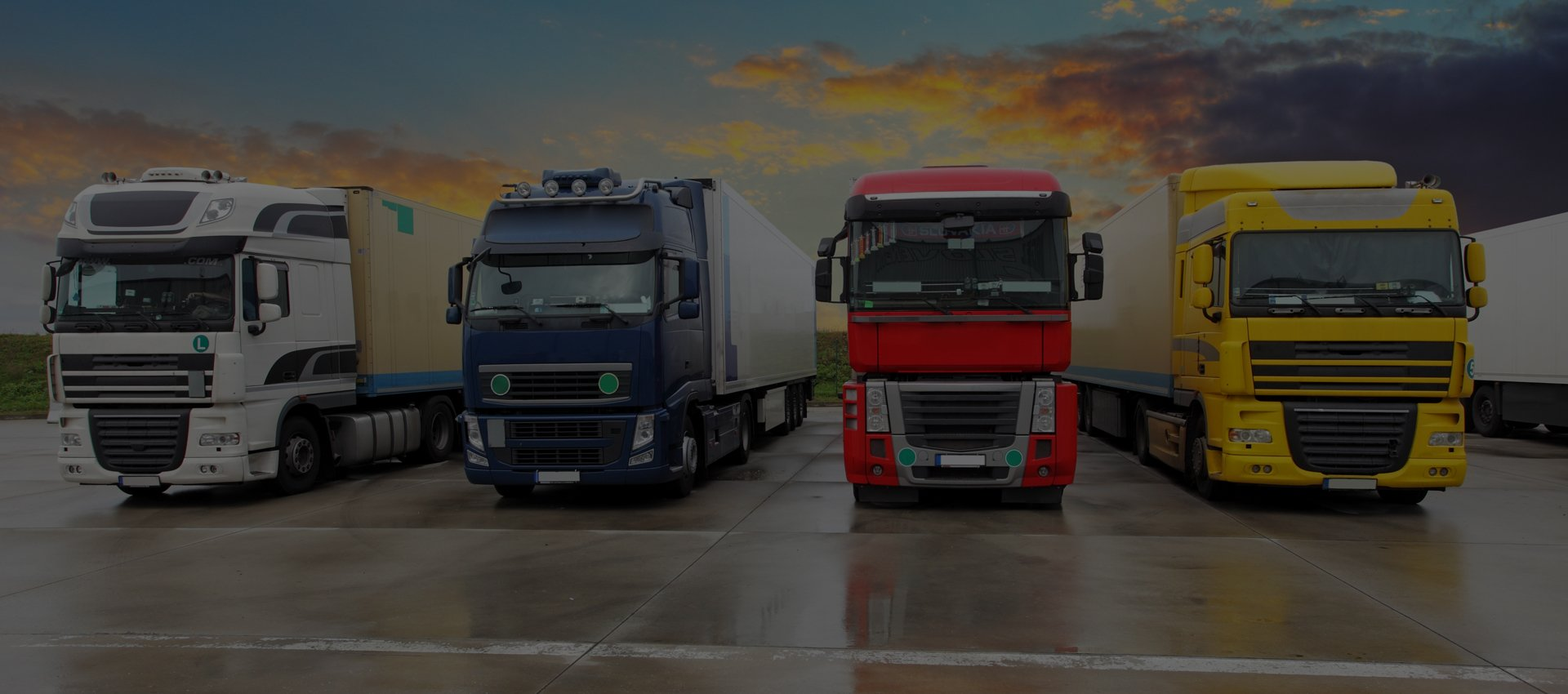 A row of haulage trucks