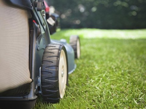 Davide Prola Realizzazione e Manutenzione Aree Verdi - taglio erba