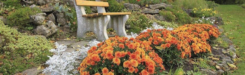 Davide Prola Realizzazione e Manutenzione Aree Verdi  - realizzazione giardini