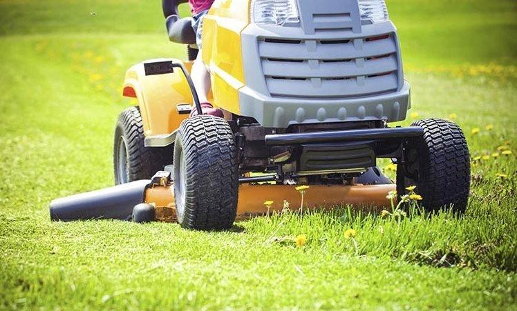 garden-wheelie-bin-mower