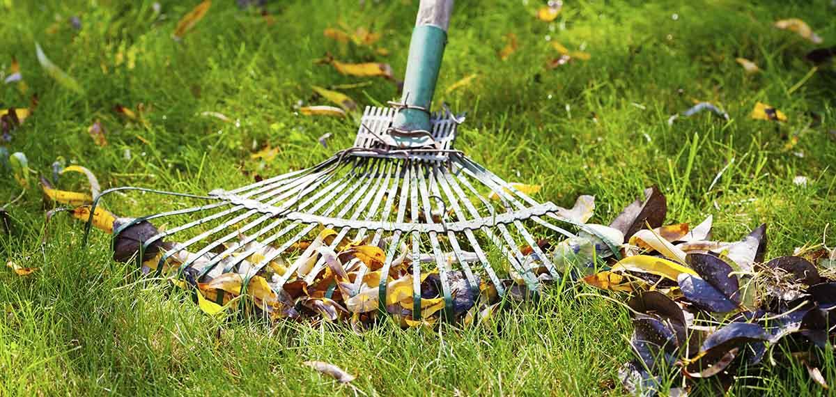 Garden Wheelie Bin