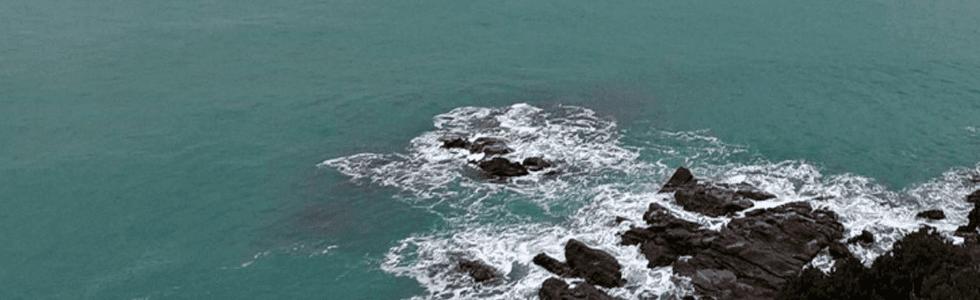 Ristorante sul Mare a  Livorno