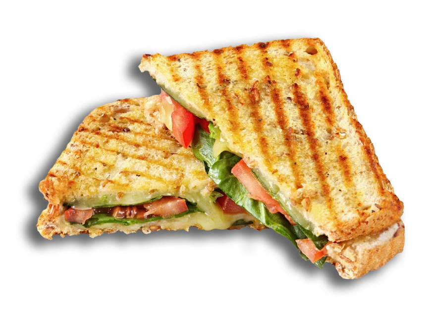 Surfside Panini