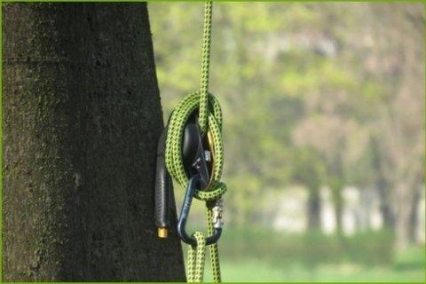 operatori tree climbing