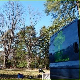 Tree Climing, Arboricoltura