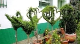 costi realizzazione giardini, preventivi giardinaggio, preventivi realizzazione giardini