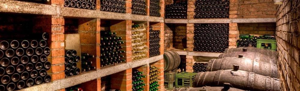 cantina vitivinicola