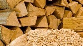 legname tagliato, pellet di abete, legna da camino