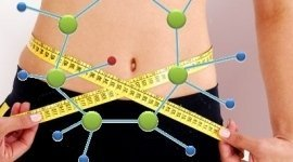 obesità infantile, preparazione di diete specifiche, analisi computerizzate del corpo