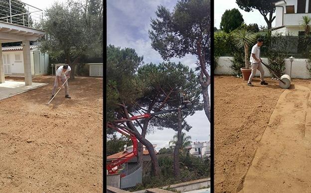 Trulli Enzo & Figli giardinaggio Pontinia-6.jpeg