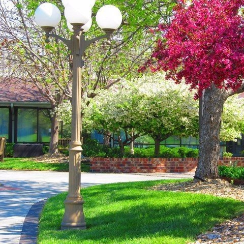 Flowers and greenery at Aldersgate Village
