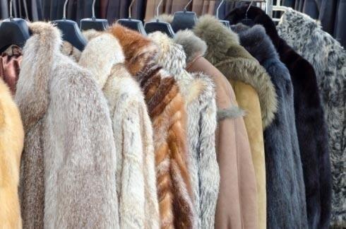 Lavaggio pellicce