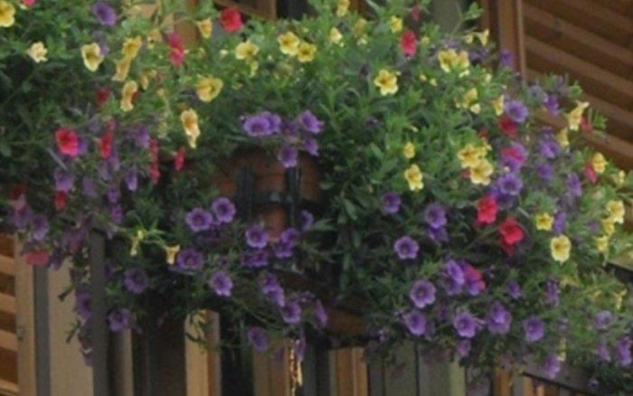 progettazione giardini la serra bergamo