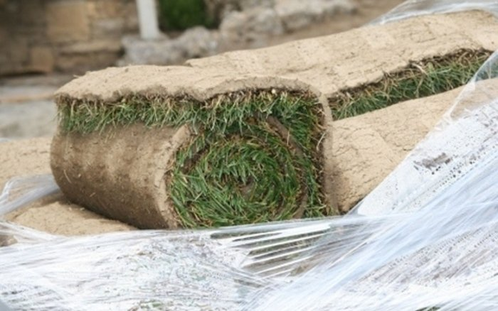 la serra calegari - giardinaggio