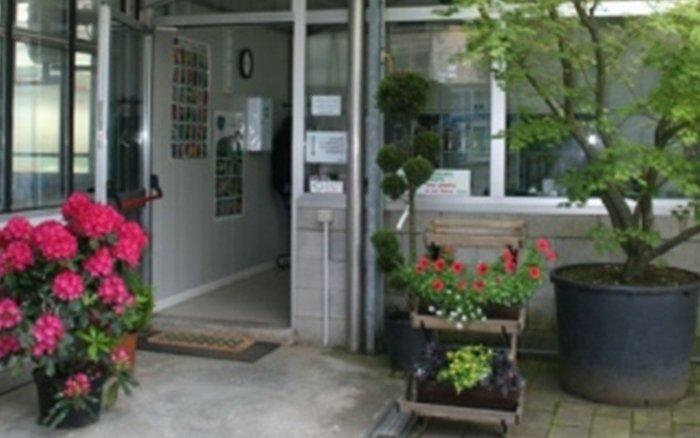 vendita piante clusone