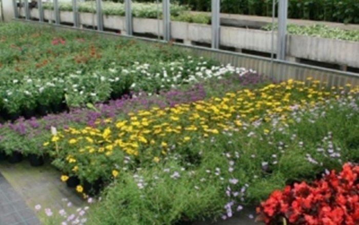 fiorista la serra bergamo