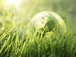 servizi per ecologia