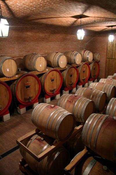 assortimento di botti di vino