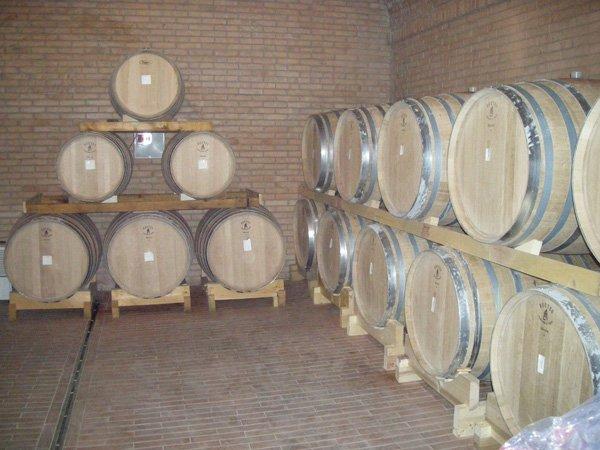 vista frontale botti di vino