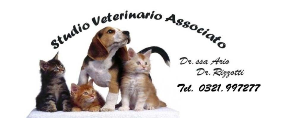 AMBULATORIO VETERINARIO ASSOCIATO RIZZOTTI DR. ENRICO E ARIO DOTT.SSA SIMONA
