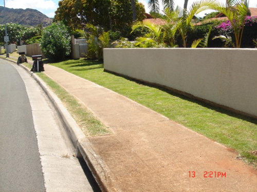 Area outside a residence in the process of transforming into a fantastic landscape design in Honolulu, HI