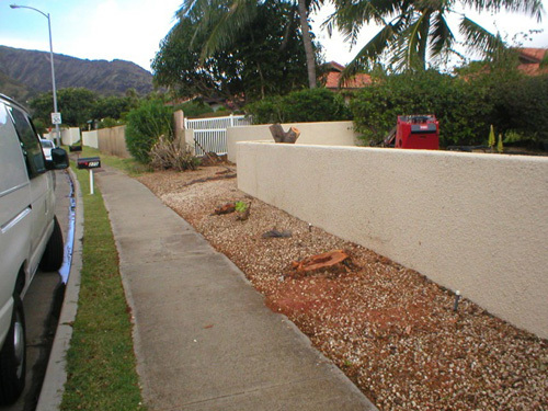 Area outside a residence to be designed into a fantastic landscape in Honolulu, HI